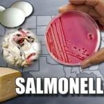 Salmonellosi: cause,sintomi e cure