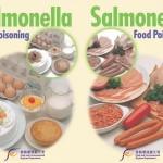 Tossinfezioni alimentari da Salmonella