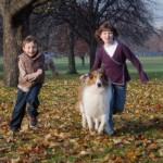 Bambini obesi? Un cane in famiglia dimezza il rischio