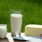 Intolleranza al latte: sintomi e alimentazione da seguire