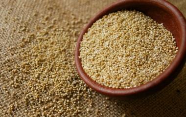 Quinoa: cos'è e come cucinarla
