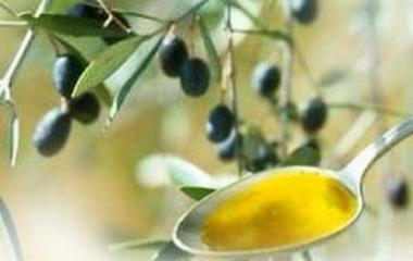 Olio d'oliva per avere ossa più forti
