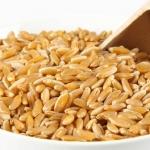 Tutto sul kamut, il cereale del benessere